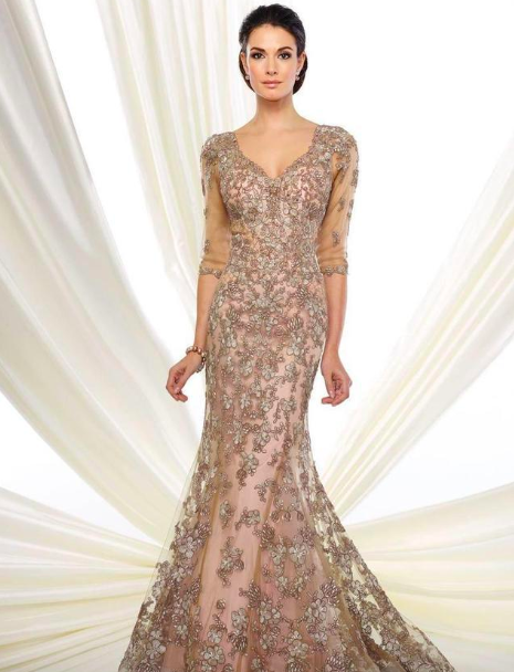 sleeve lace appliqued mesh trumpet gown